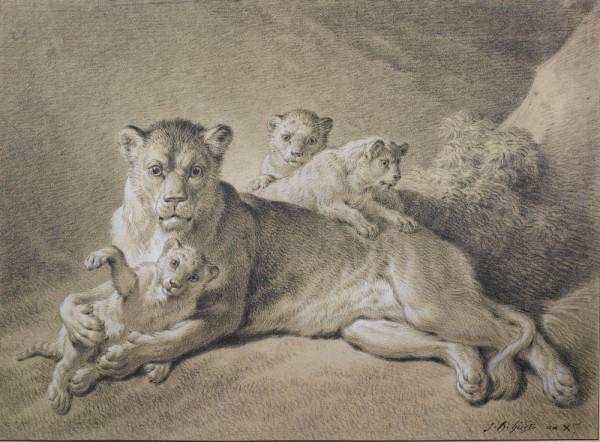 Huet lion